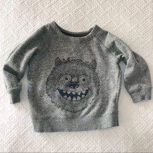Carter's monster sweatshirt grey